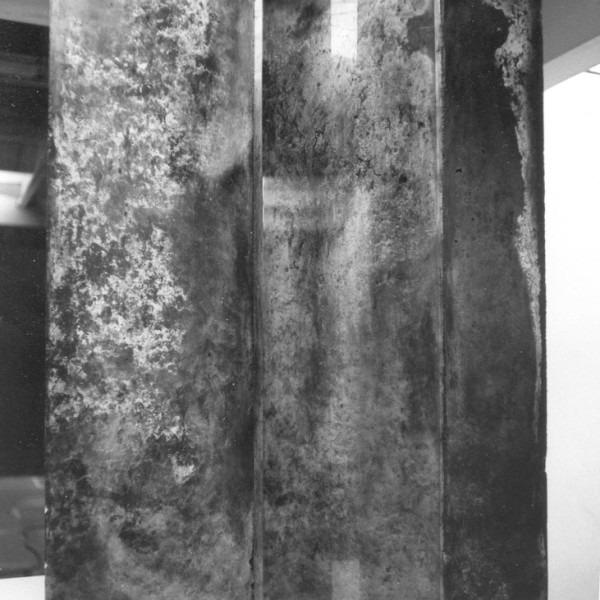 Amalia Del Ponte, Omaggio a Borges: Finzioni, 1971