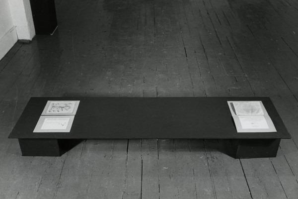 Amalia Del Ponte, Quando vedi il serpente non vedi la corda quando vedi la corda non vedi il serpente, 1978, C-Space di New York