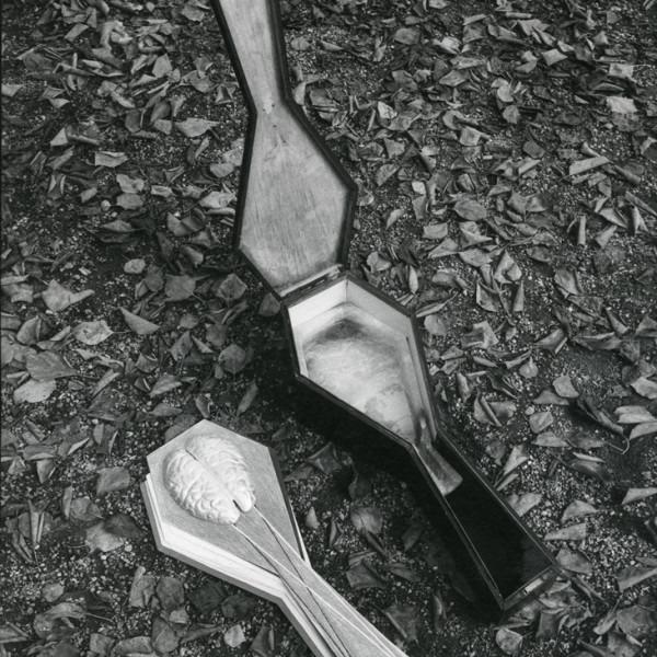 Amalia Del Ponte 1980 Musica da camera per sei strumenti ph Anro Hammacher